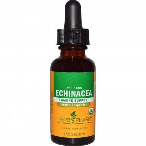 Herb Pharm, Echinacea, Whole Root, 1 fl oz (30 ml)