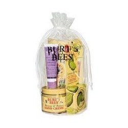 Burt's Bees Hand Repair Kit 3.16 oz ( 5 piece Kit)